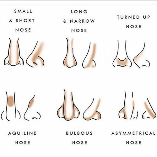 Types of nose